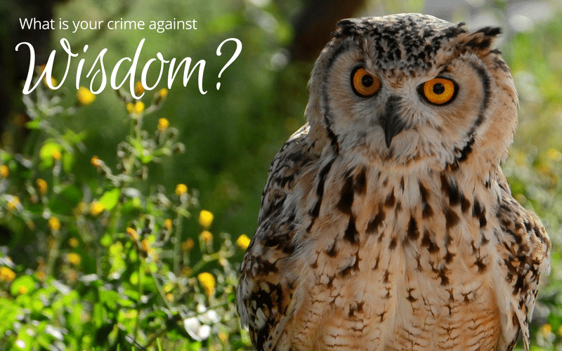 What Is Your Crime Against Wisdom? ($250 offer inside)